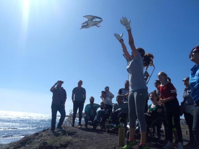 Più di 500 scolari dell'Isola partecipano al ...