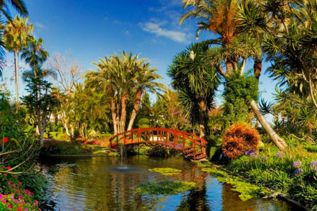 Parchi e Giardini Botanici a Tenerife