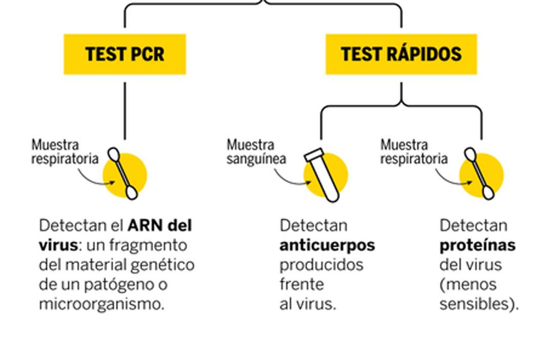 pcr test